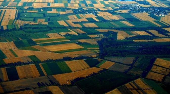 działki rolne
