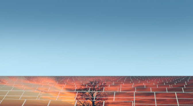 Solar panel with reflection of orange sundown with tree on clear blue sky background copyspace, horizontal picture